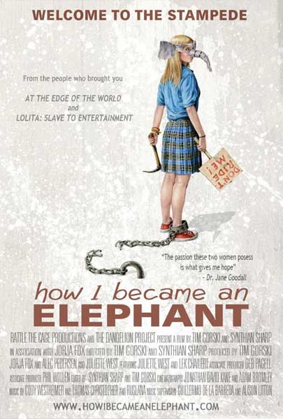 How I Became an Elephant (2011) - Movie Poster