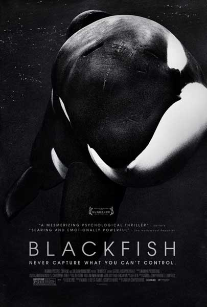Blackfish (2013)  - Movie Poster