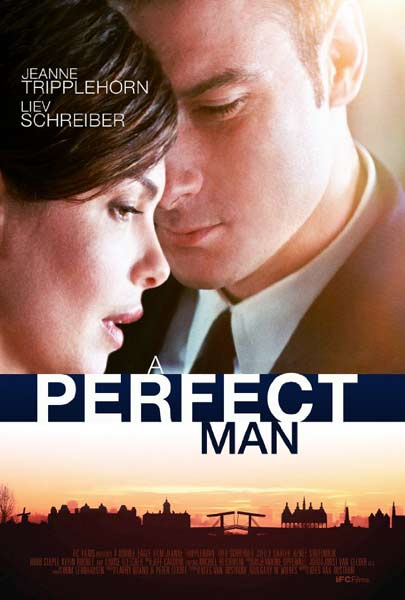 A Perfect Man (2013)  - Movie Poster
