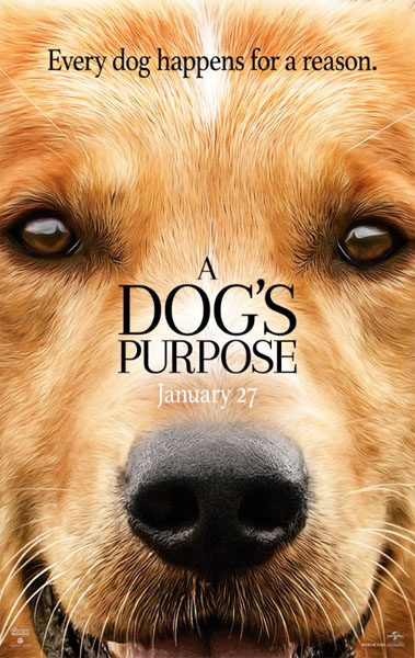 A Dog\'s Purpose (2017) - Movie Poster
