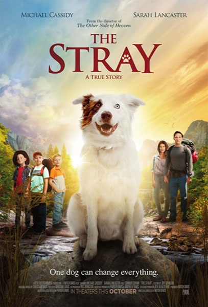 The Stray (2017) - Movie Poster