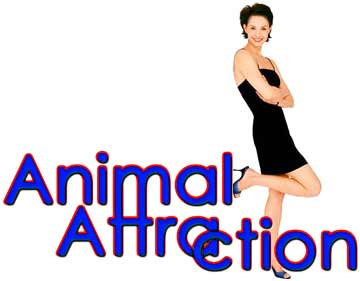 Animal Attraction (2001) - heading