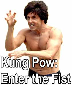 Kung pau enter the fist
